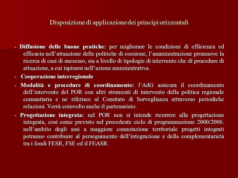 Disposizione di applicazione dei principi orizzontali