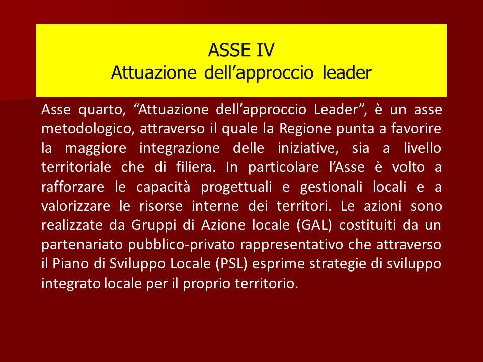 ASSE IV Attuazione dell'approccio leader