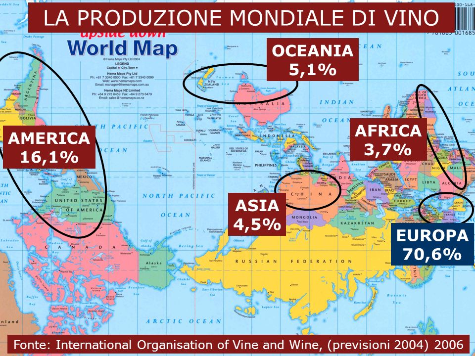 Dal vino al wine business