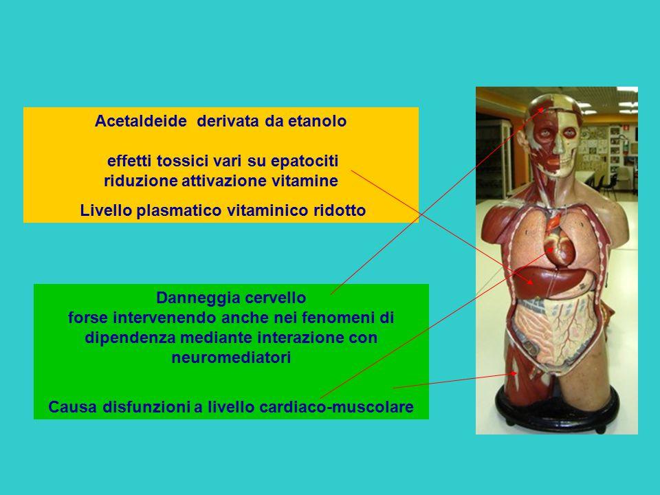 Livello plasmatico vitaminico ridotto