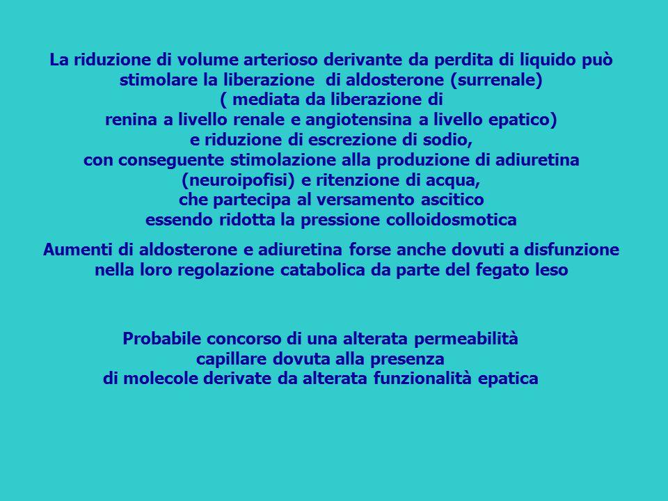 La riduzione di volume arterioso derivante da perdita di liquido può stimolare la liberazione di aldosterone (surrenale) ( mediata da liberazione di renina a livello renale e angiotensina a livello epatico) e riduzione di escrezione di sodio, con conseguente stimolazione alla produzione di adiuretina (neuroipofisi) e ritenzione di acqua, che partecipa al versamento ascitico essendo ridotta la pressione colloidosmotica