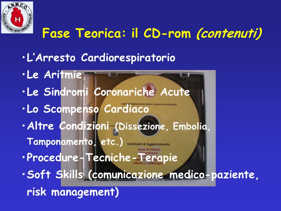 Fase Teorica: il CD-rom (contenuti)