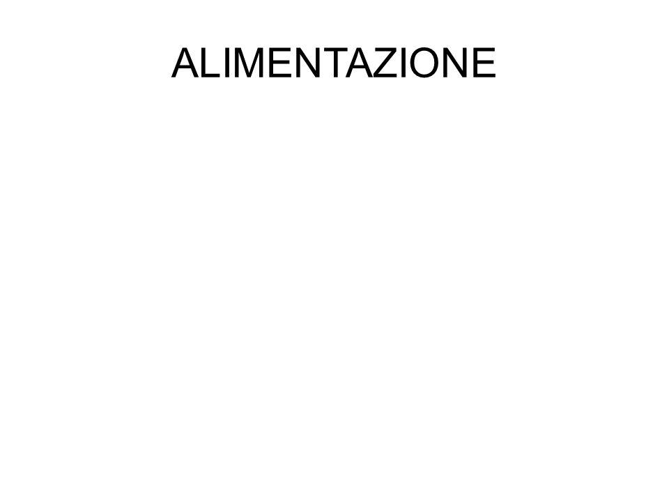 ALIMENTAZIONE