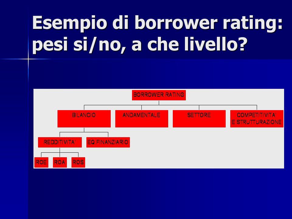 Esempio di borrower rating: pesi si/no, a che livello