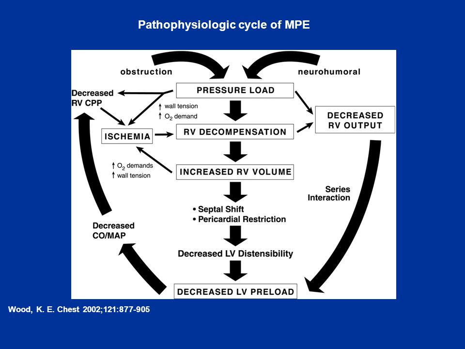Pathophysiologic cycle of MPE