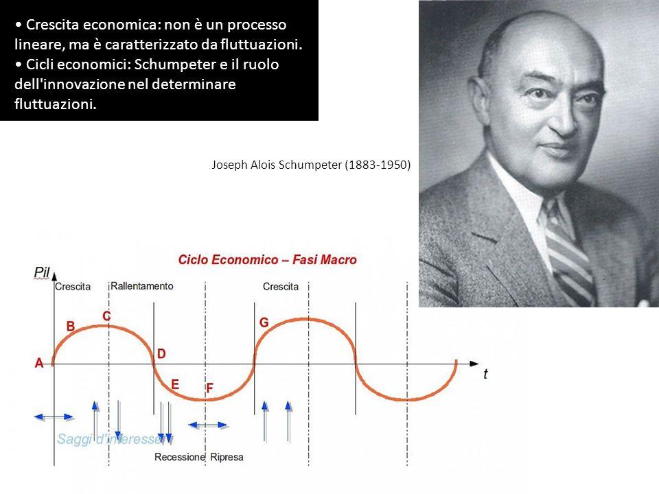 Crescita economica: non è un processo lineare, ma è caratterizzato da fluttuazioni.