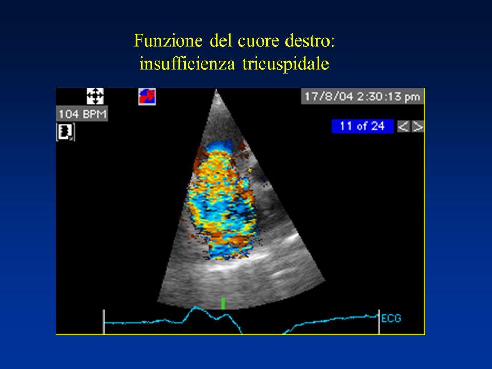 Funzione del cuore destro: insufficienza tricuspidale