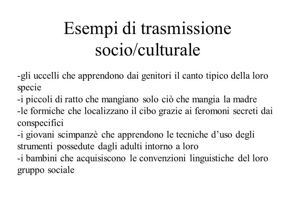 Esempi di trasmissione socio/culturale