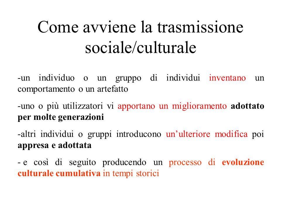 Come avviene la trasmissione sociale/culturale