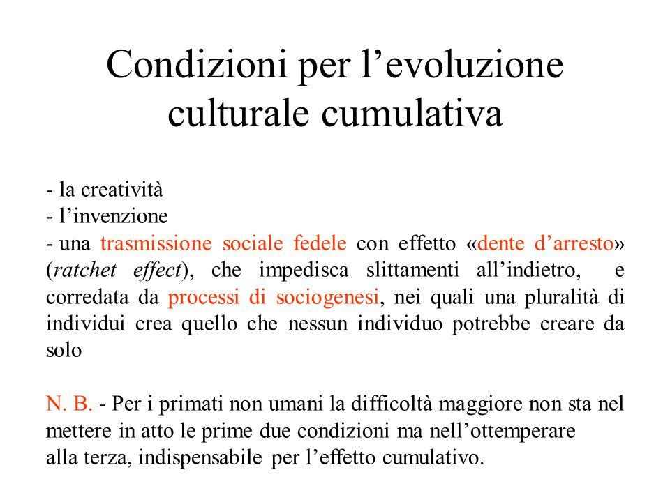 Condizioni per l'evoluzione culturale cumulativa