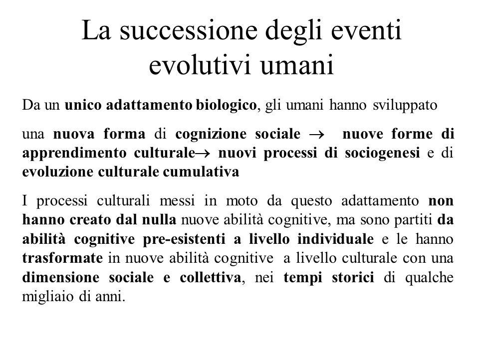 La successione degli eventi evolutivi umani
