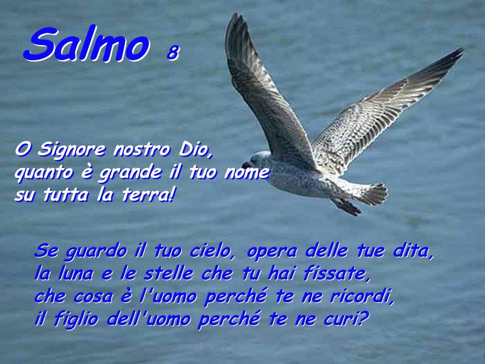 Salmo 8 O Signore nostro Dio, quanto è grande il tuo nome