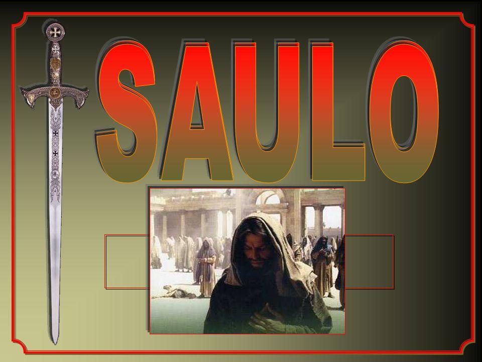 SAULO SAULO