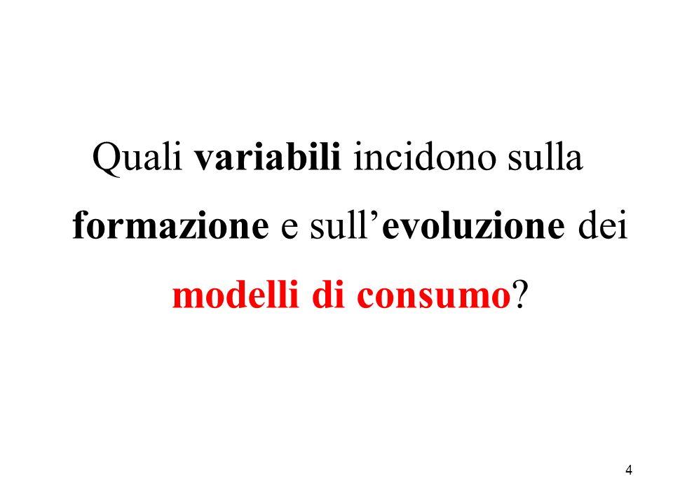 Quali variabili incidono sulla formazione e sull'evoluzione dei modelli di consumo