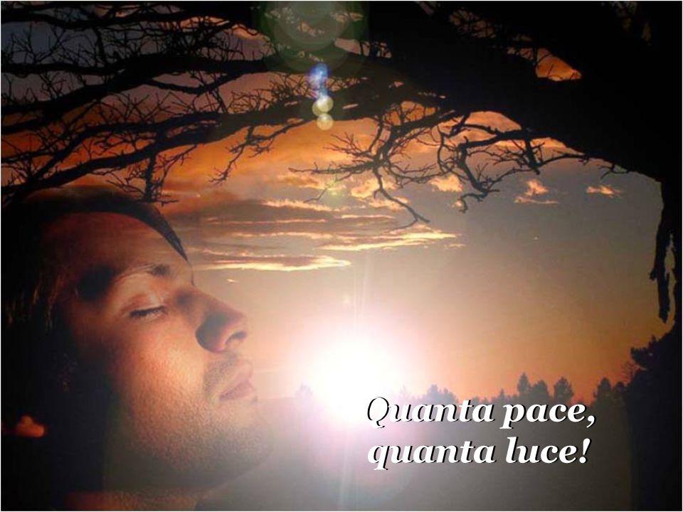 Quanta pace, quanta luce!