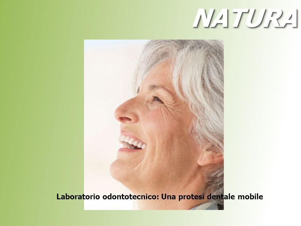 NATURA Laboratorio odontotecnico: Una protesi dentale mobile