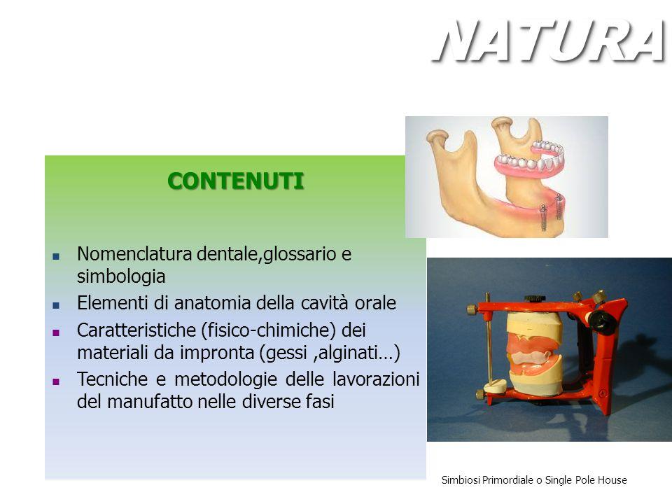 NATURA CONTENUTI Nomenclatura dentale,glossario e simbologia