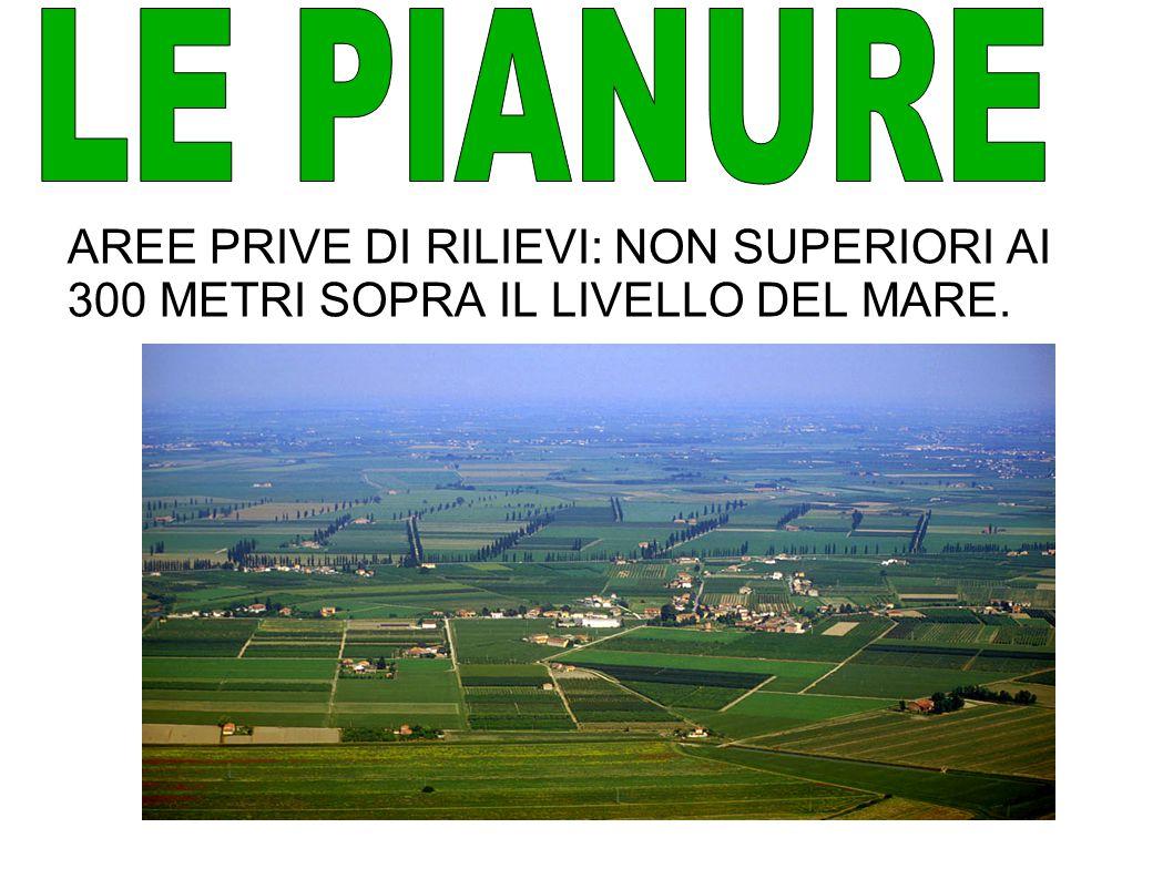 LE PIANURE AREE PRIVE DI RILIEVI: NON SUPERIORI AI 300 METRI SOPRA IL LIVELLO DEL MARE.