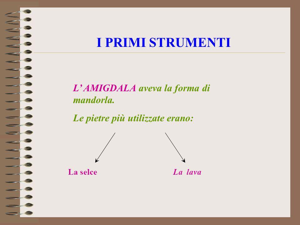 I PRIMI STRUMENTI L' AMIGDALA aveva la forma di mandorla.