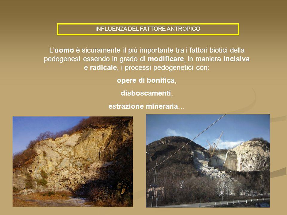 estrazione mineraria…