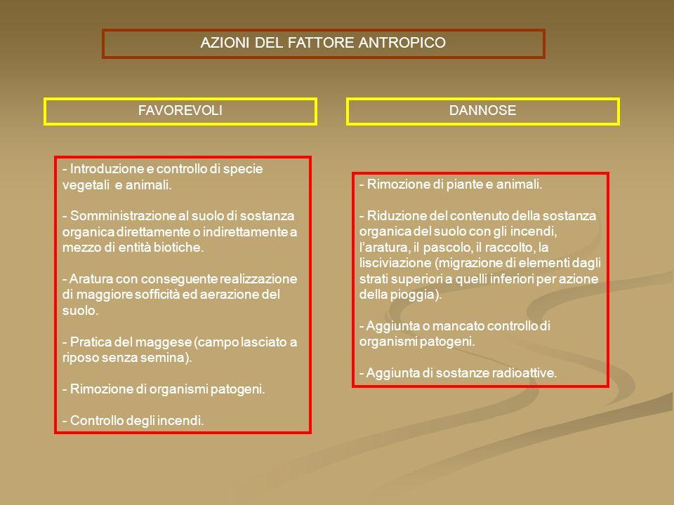 AZIONI DEL FATTORE ANTROPICO