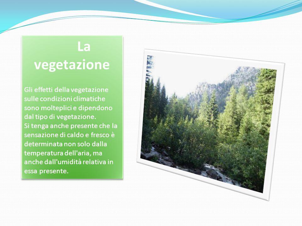 La vegetazione Gli effetti della vegetazione sulle condizioni climatiche sono molteplici e dipendono dal tipo di vegetazione.