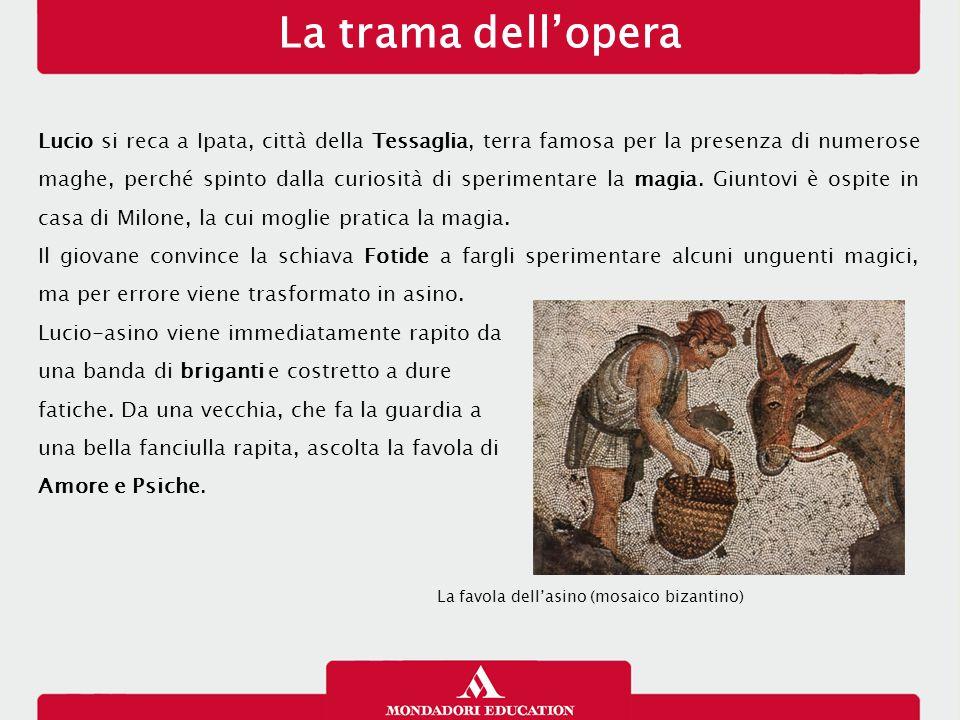 La trama dell'opera 23/01/13.