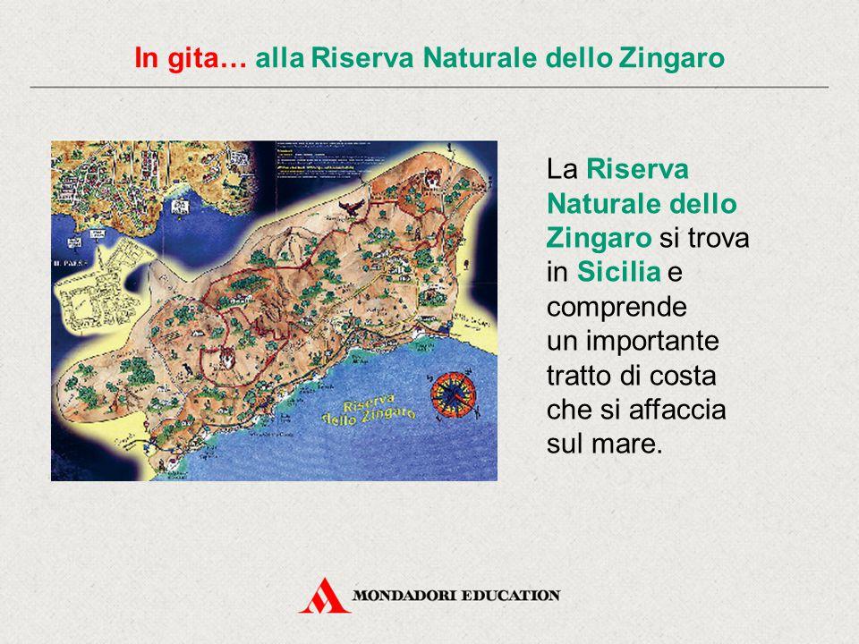 In gita… alla Riserva Naturale dello Zingaro