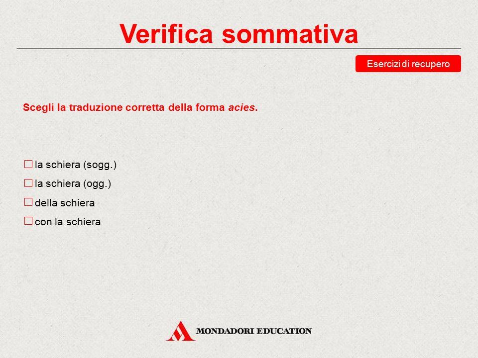 Verifica sommativa Scegli la traduzione corretta della forma acies.