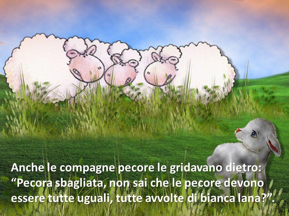 Anche le compagne pecore le gridavano dietro: