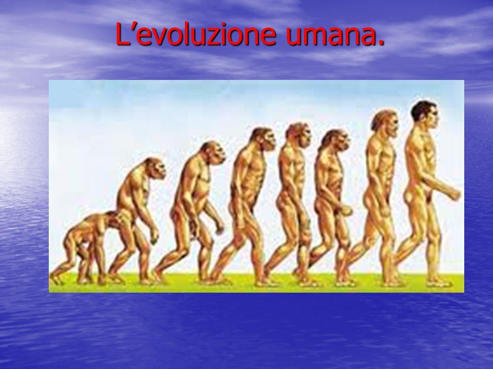 L'evoluzione umana.
