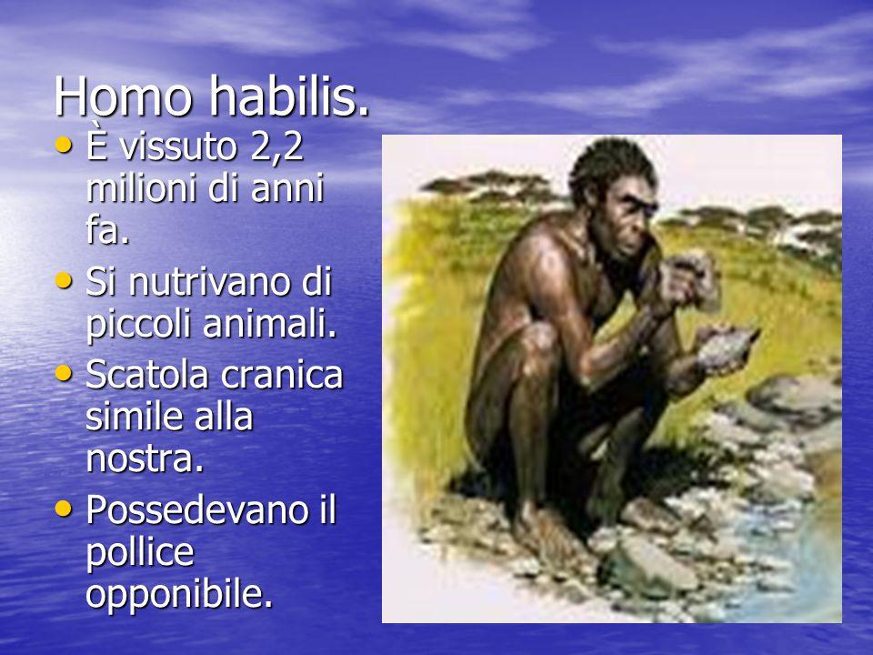 Homo habilis. È vissuto 2,2 milioni di anni fa.