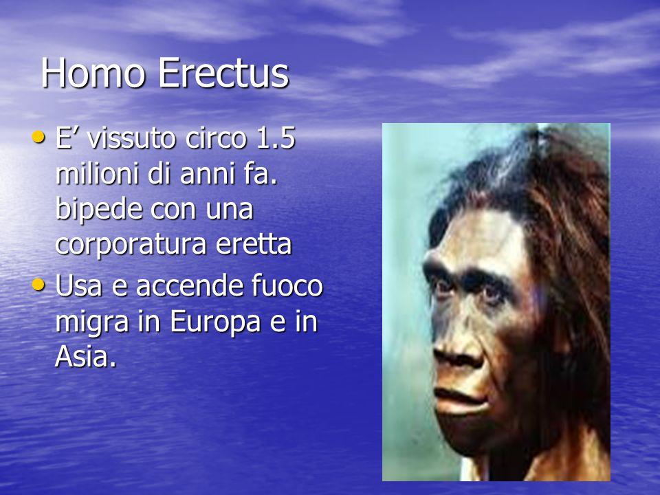 Homo Erectus E' vissuto circo 1.5 milioni di anni fa.