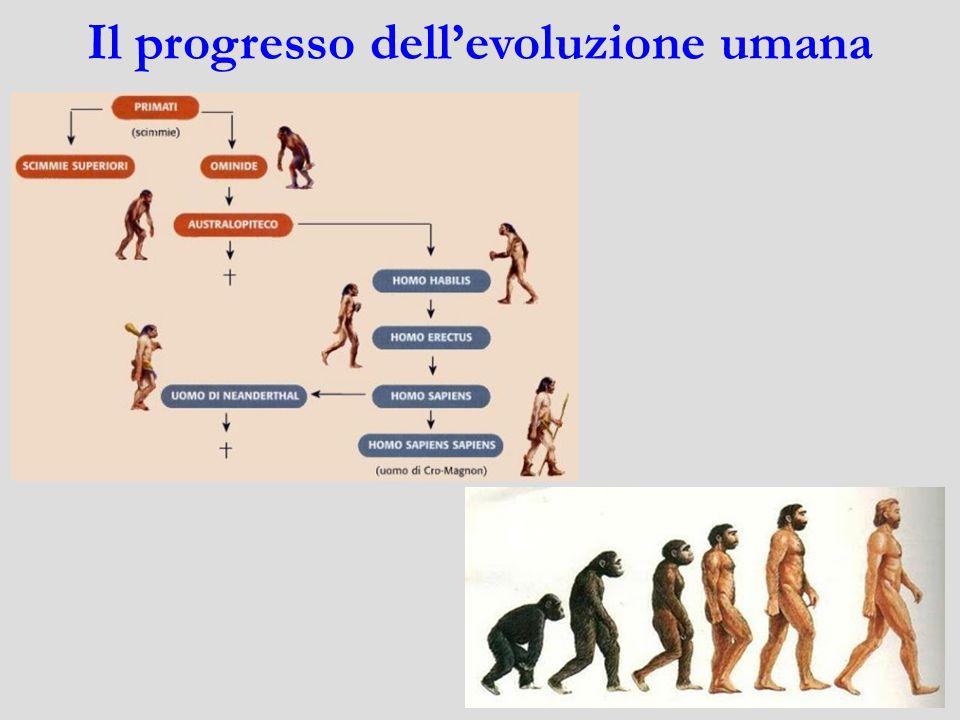 Il progresso dell'evoluzione umana
