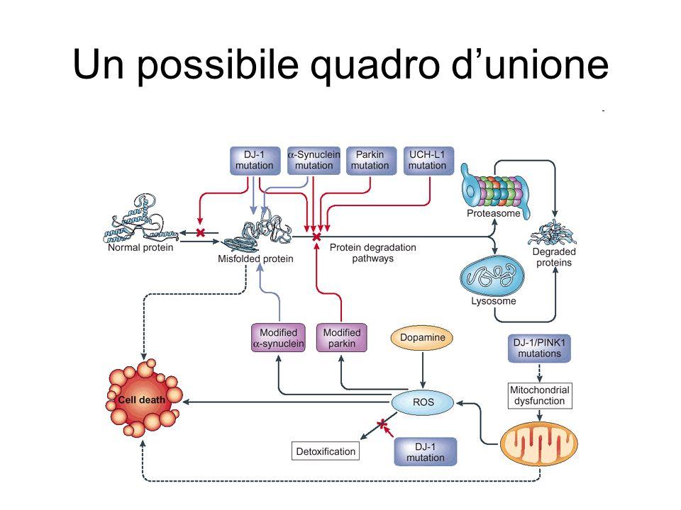 Un possibile quadro d'unione