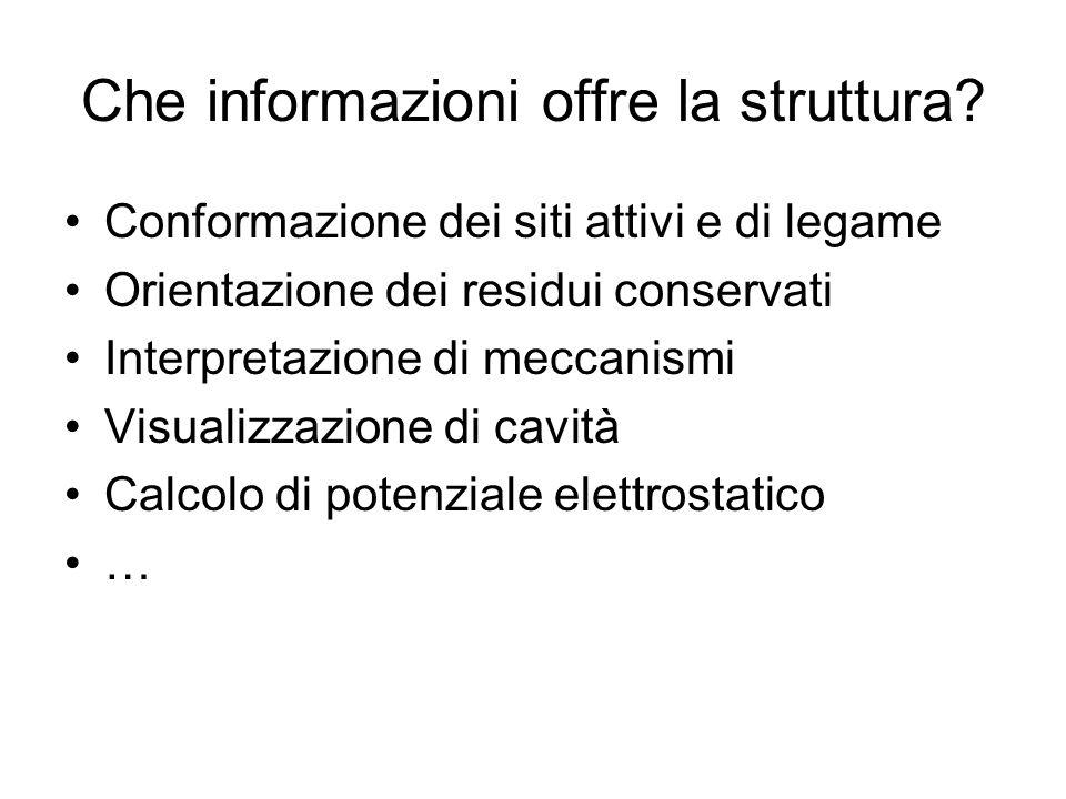 Che informazioni offre la struttura