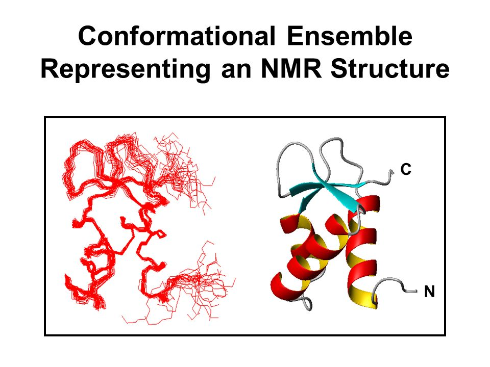 Conformational Ensemble Representing an NMR Structure