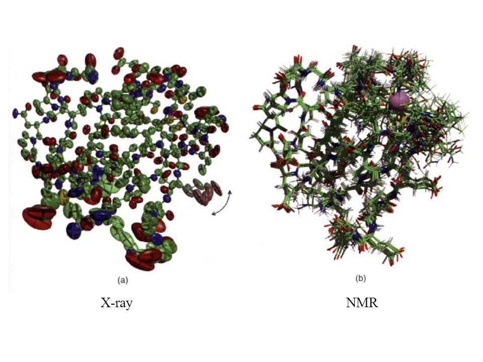 X-ray NMR
