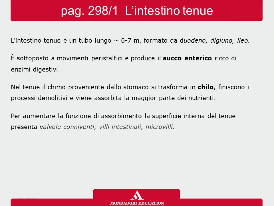 pag. 298/1 L'intestino tenue