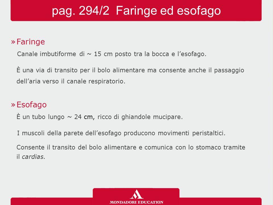 pag. 294/2 Faringe ed esofago