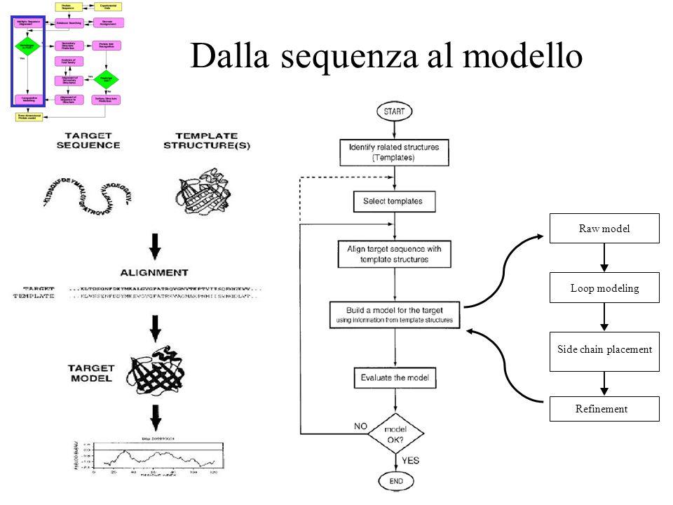 Dalla sequenza al modello