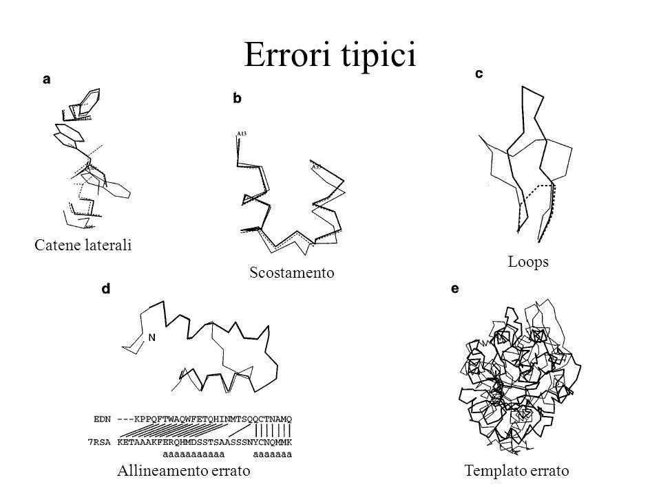 Errori tipici Catene laterali Loops Scostamento Allineamento errato