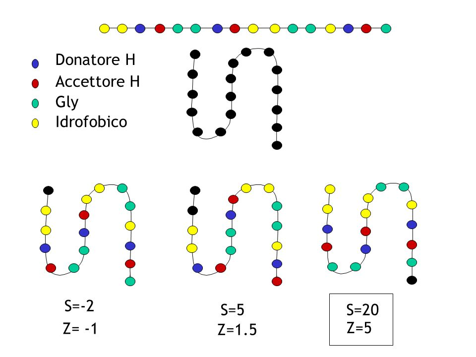 Donatore H Accettore H Gly Idrofobico S=-2 S=5 S=20 Z= -1 Z=1.5 Z=5 25