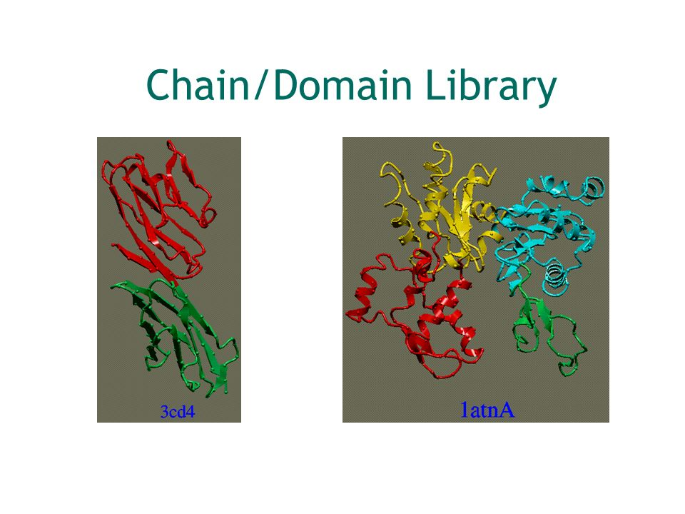 Chain/Domain Library