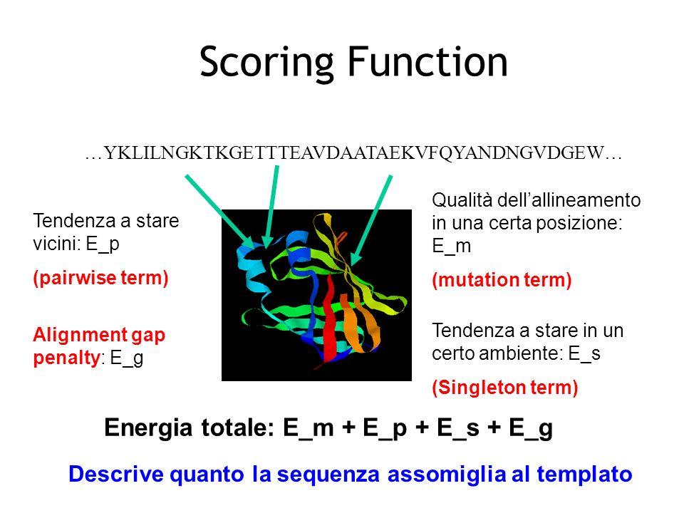 Scoring Function Energia totale: E_m + E_p + E_s + E_g