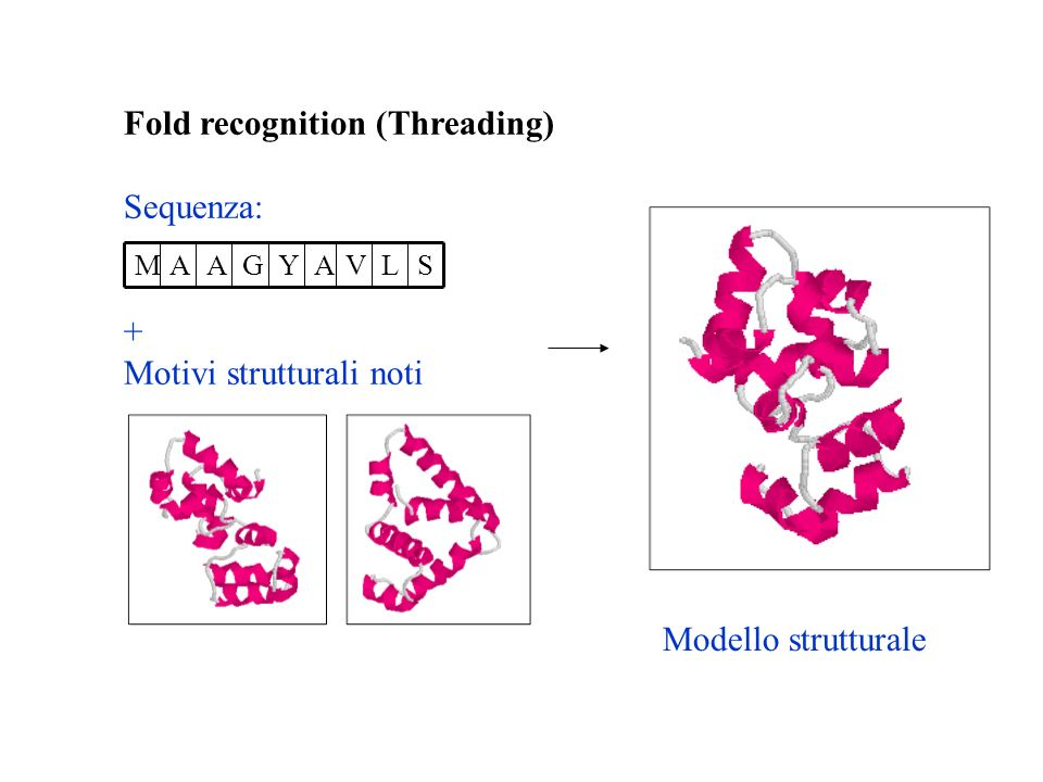 Fold recognition (Threading) Sequenza: