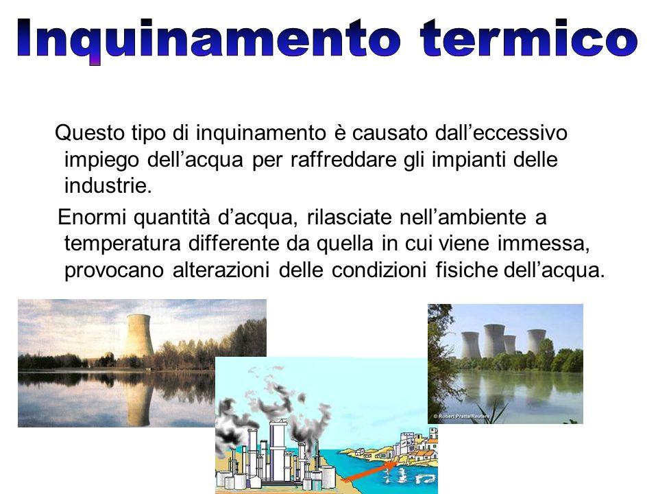 Inquinamento termico Questo tipo di inquinamento è causato dall'eccessivo impiego dell'acqua per raffreddare gli impianti delle industrie.