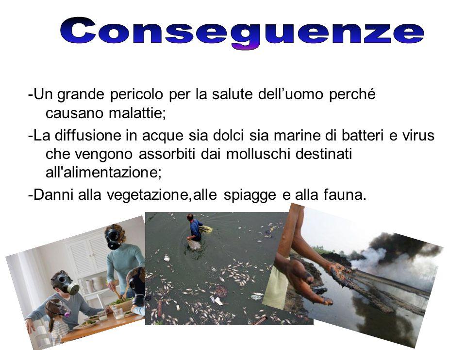 Conseguenze -Un grande pericolo per la salute dell'uomo perché causano malattie;