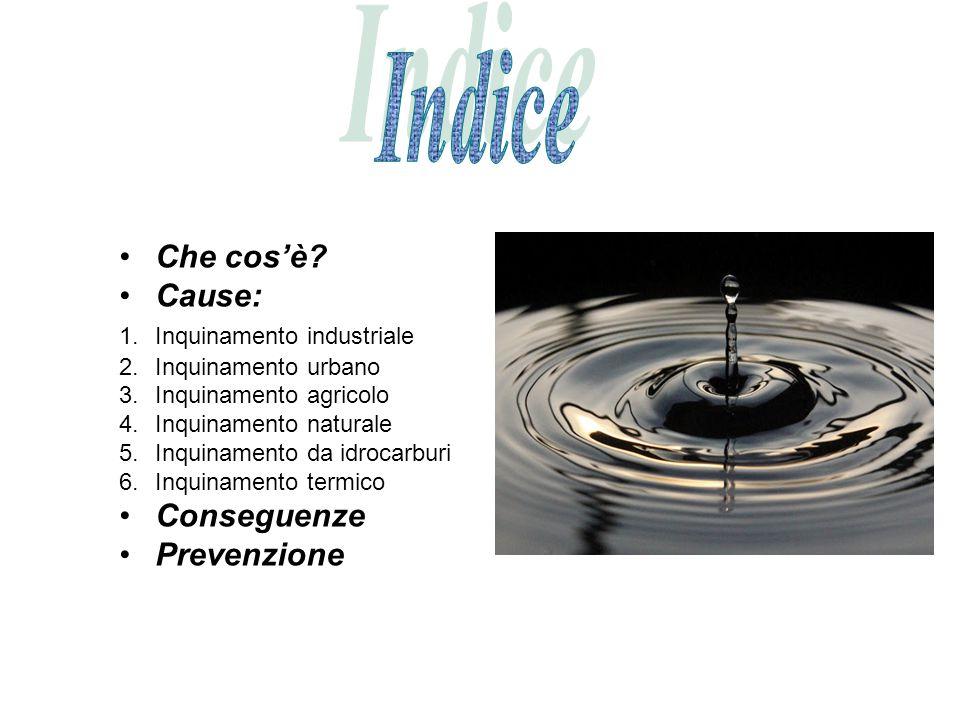 Indice Che cos'è Cause: Conseguenze Prevenzione