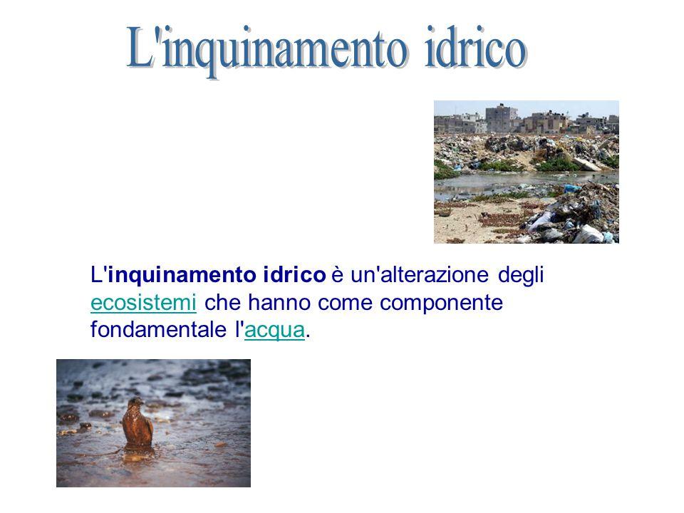 L inquinamento idrico L inquinamento idrico è un alterazione degli ecosistemi che hanno come componente fondamentale l acqua.